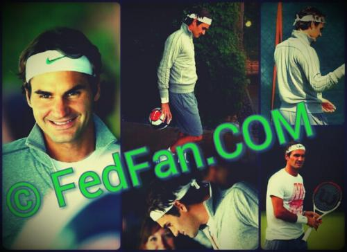 fedfan collageeeeeeeeeeee.jpg